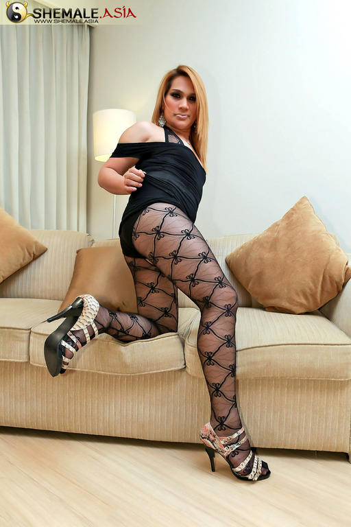 Chubby T-Girl In Body Stocking Jerk Session