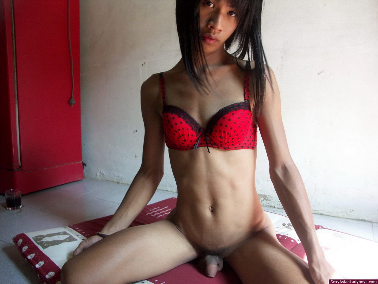 Enjoy Your Erotic Vacations With This Romantic Asian Femboy
