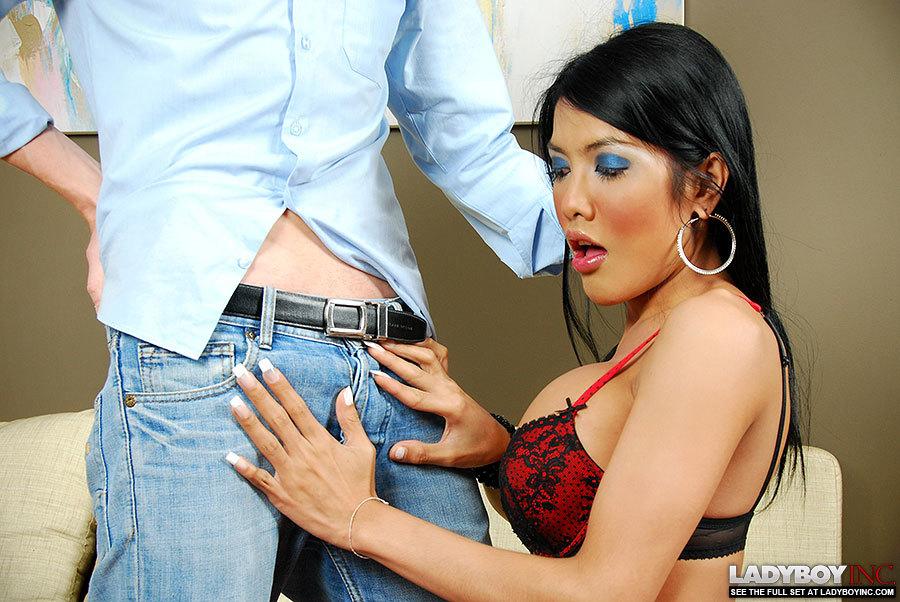 Enormous Tit Thai TGirl Gets Creampied