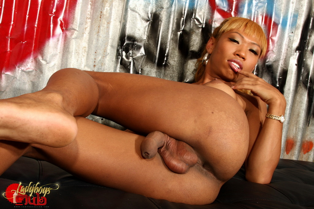 Exotic TS Cindy Flashes Her Enormous Cock