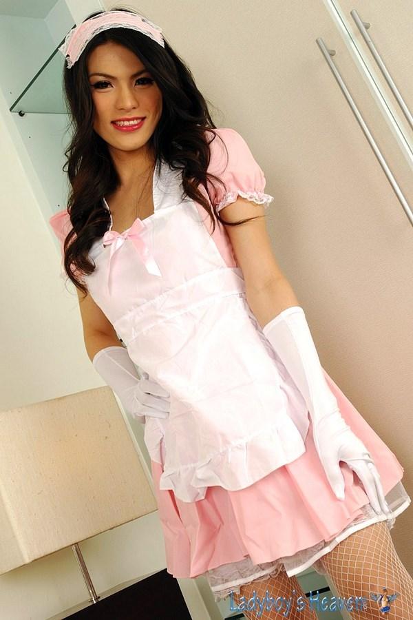 Gorgeous Bangkok Transexual Maid