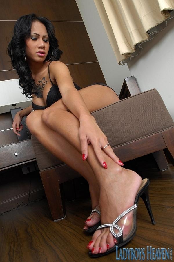 Seductive T-Girl New Foot Fetish