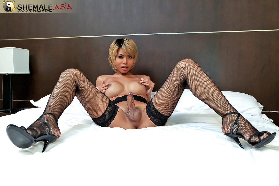 Super Hung And Hung Shemale Strokes Off