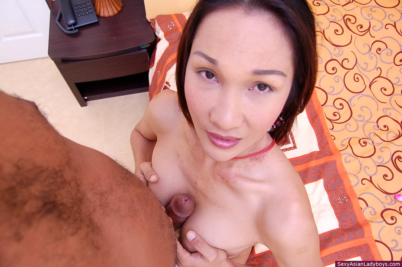 This Busty Asian Transexual Is Happily Sodomized By Her White Client
