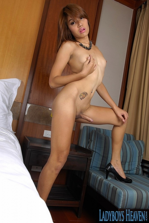 Tranny Noon Solo Anal Toying