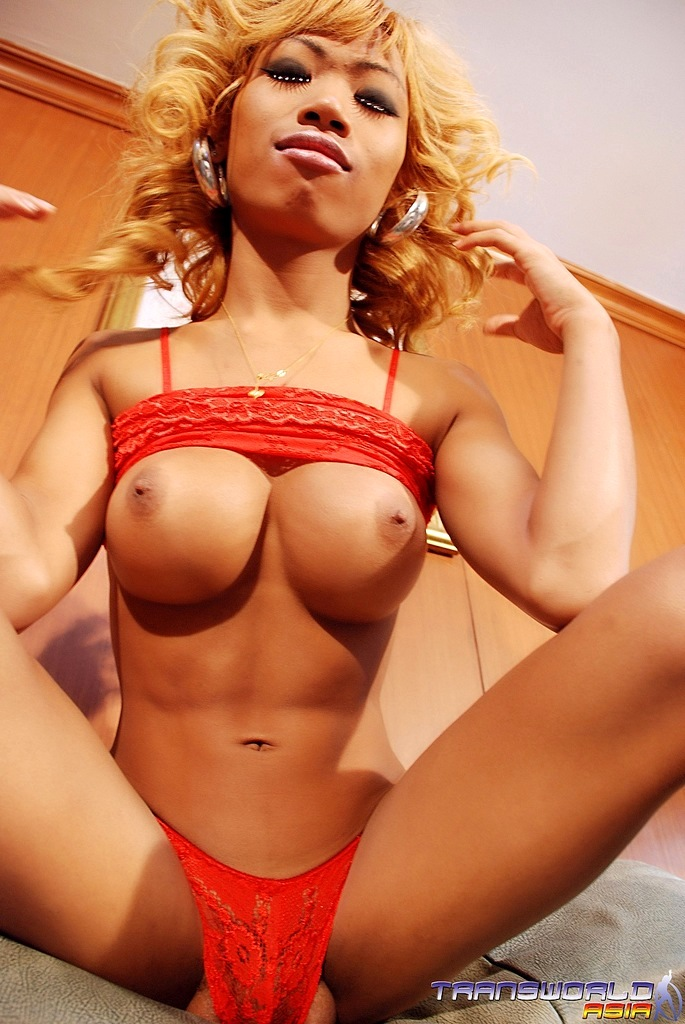 TS Sindy Is Hung Starved And Only On Transworldasia